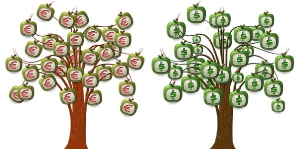 006 Das Geldbaum Modell